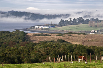 Coast of Chiloe island, Chile