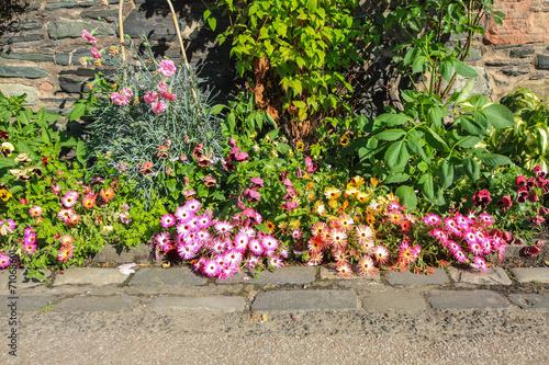 Papiers peints Azalea Flower decoration outside a house
