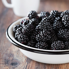 Fresh blackberries in metal bowl, selective focus