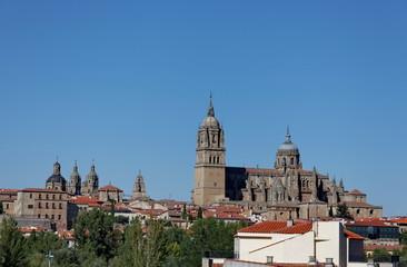 Cathédrale de Salamanque. Salamanca.