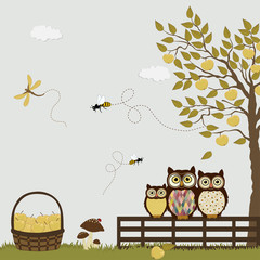 A family of owls in a orchard with apples