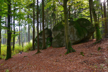 Granit Felsen Fichtelgebirge