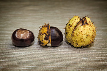 three Chestnuts