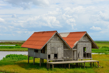 Twin house on wetland