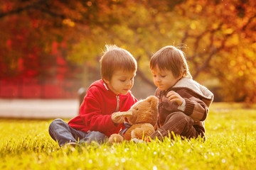 Two cute little boys with teddy bear in the park