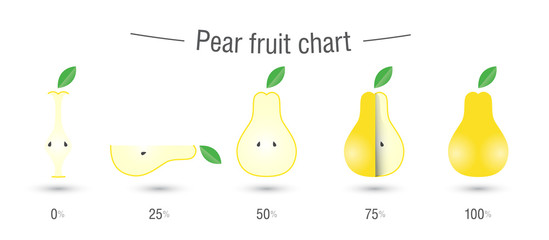 Pear fruit charts infographics
