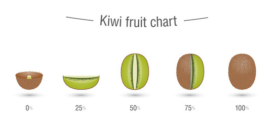 Kiwi fruit charts infographics