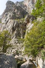 Torrent dans le canyon à Packlenica