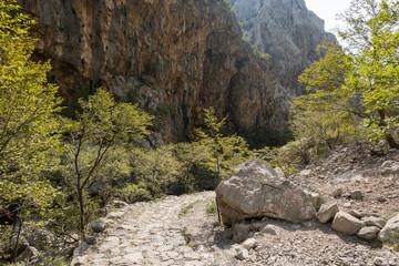 Sentier dans le canyon de Paklenica