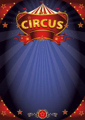 Fantastic night circus poster