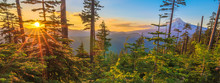 "Постер, картина, фотообои ""Beautiful Vista of Mount Hood in Oregon, USA."""