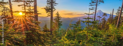 Foto op Aluminium Bergen Beautiful Vista of Mount Hood in Oregon, USA.
