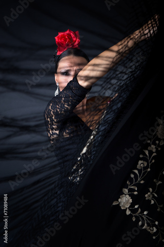 Fotobehang Dance School Young flamenco dancer in beautiful dress on black background.