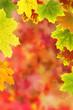 Herbst 25