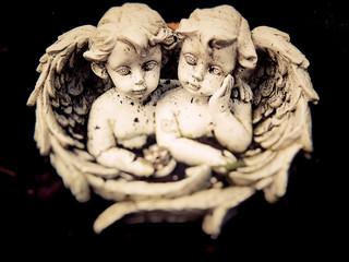 zwei süsse Engel