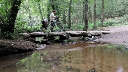 journey on a bicycle through the woods