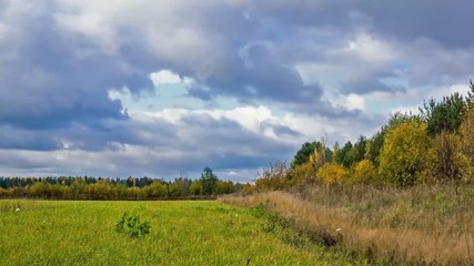 Timelapse of the autumn meadow and cloudy sky