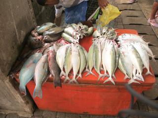 marché seychelles