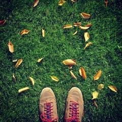 Shoes grass leaf autumn