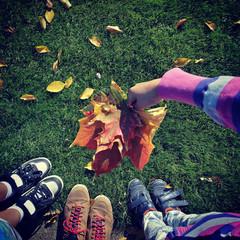 Grass shoes kids autumn leaf