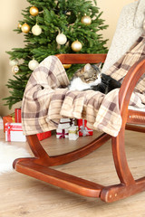 Cute cat on rocking chair in the front of the Christmas tree