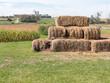 Hay Bales in farmland setting