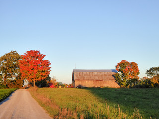 Farmland with Fall colour