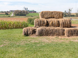 Hay Bales in farmland setting