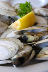 Bowl of Delicious Fresh Steamer Clams with Lemon and Broth..