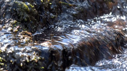 Cool clear mountain stream water and rocks