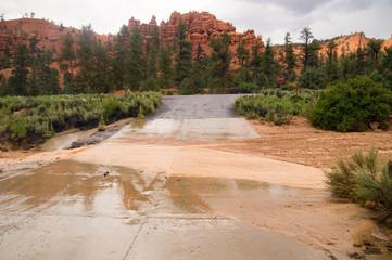 Flash flood at Red Canyon Utah