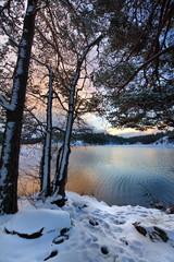 Szwecja , okolice Sztokholmu, zima nad jeziorem