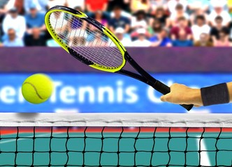 Hitting Tennis Ball in Front of the Net
