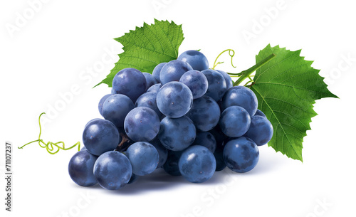 Papiers peints Fruit Blue grapes dry bunch isolated on white background