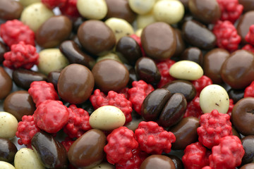 Chocolate-covered coffee beans