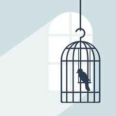 Bird in cage in room