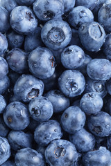 fresh washed blueberries from above