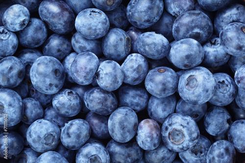 fresh ripe  blueberries berries Photo by GCapture