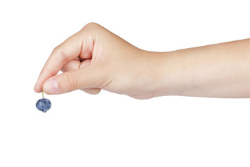 female teen hand holding ripe blueberry