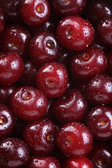 ripe washed cherries close up