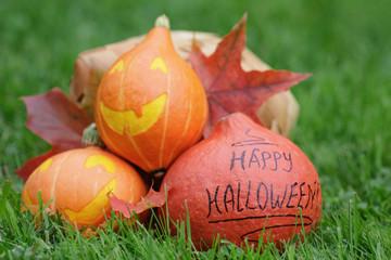 funny halloween pumkins on grass