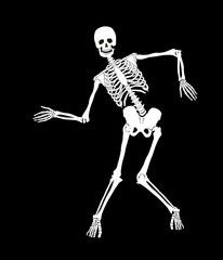 Funny vector skeleton on black. Halloween design