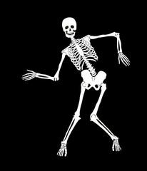 Funny vector skeleton on black. Halloween design