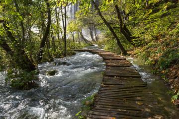 Ponton inondé, forêt et cascade à Plitvice-Plitvicka