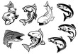 Cartoon salmons fish set - 71116225