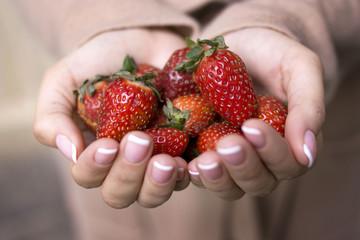 A handful of ripe strawberries