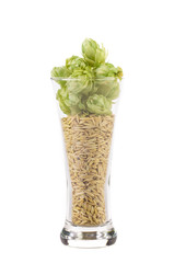Tall glass full of grains and hop.