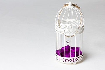 Engagement ring hanging in white metal bird cage