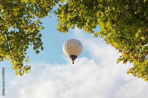 Deurstickers Luchtsport Heißluftballon und Baumkrone