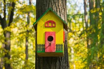funny colorful birdhouse in the autumn garden